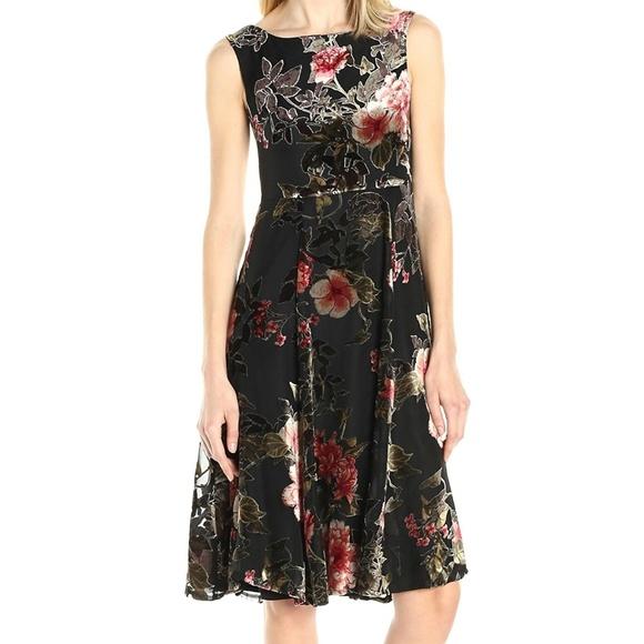 bb0b9e10 Betsey Johnson Dresses | Black Velvet Burnout Tea Dress | Poshmark